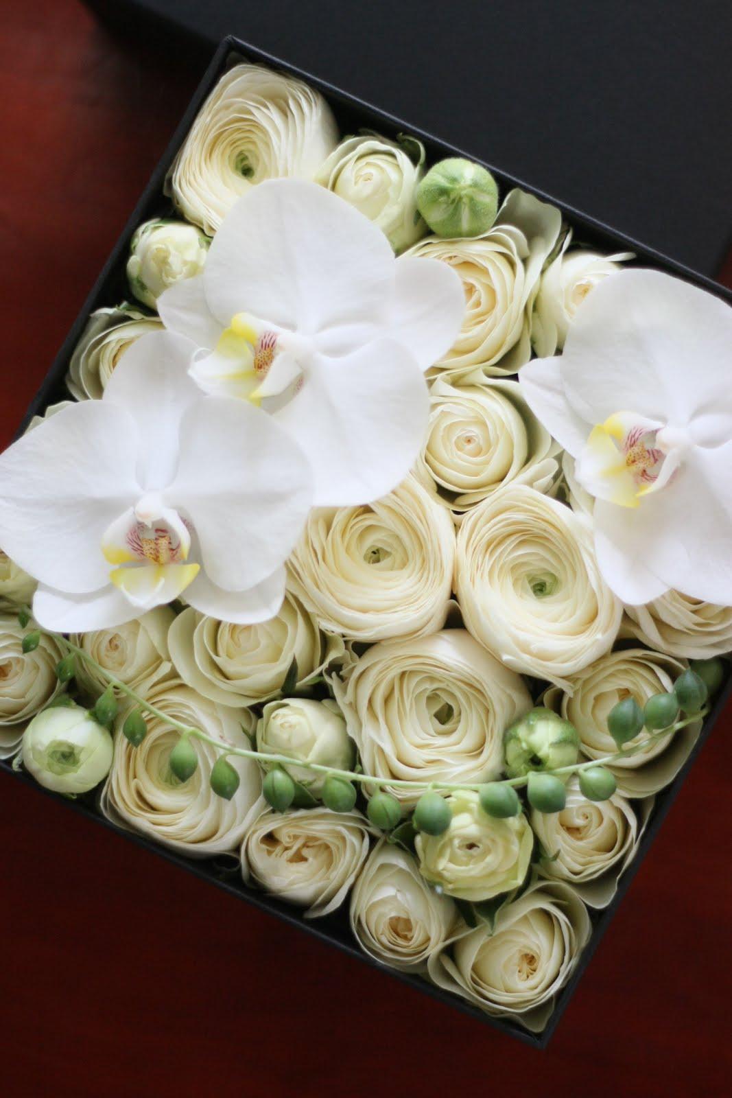 fleur de Nier