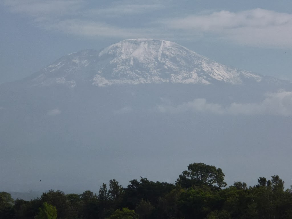 the snows of kilimanjaro setting