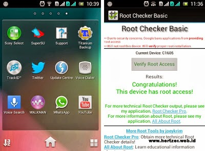 root sukses