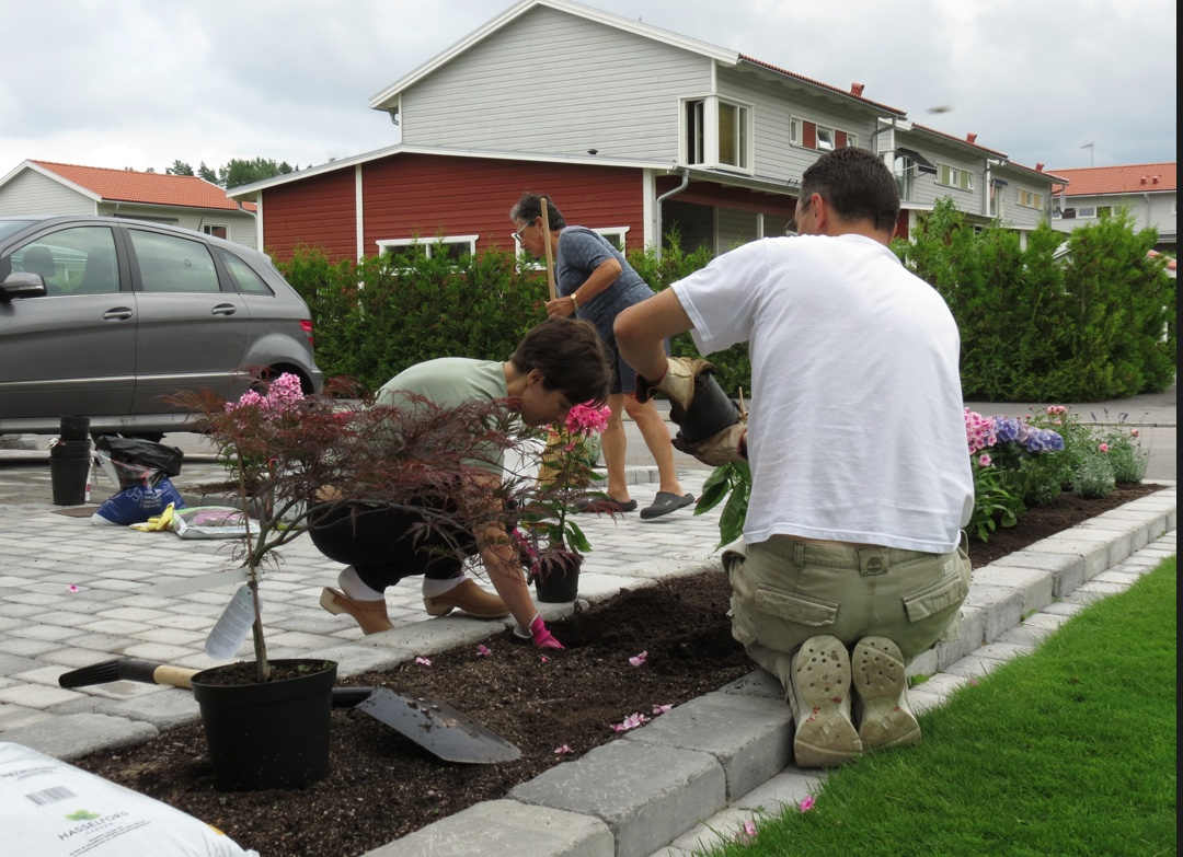 one way to sweden - il blog di due italiani in svezia: giardino ... - Piccolo Giardino In Casa