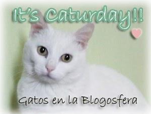 http://blogmyumyu.blogspot.com/