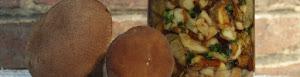 Erdei és mezei gombák tartósítása