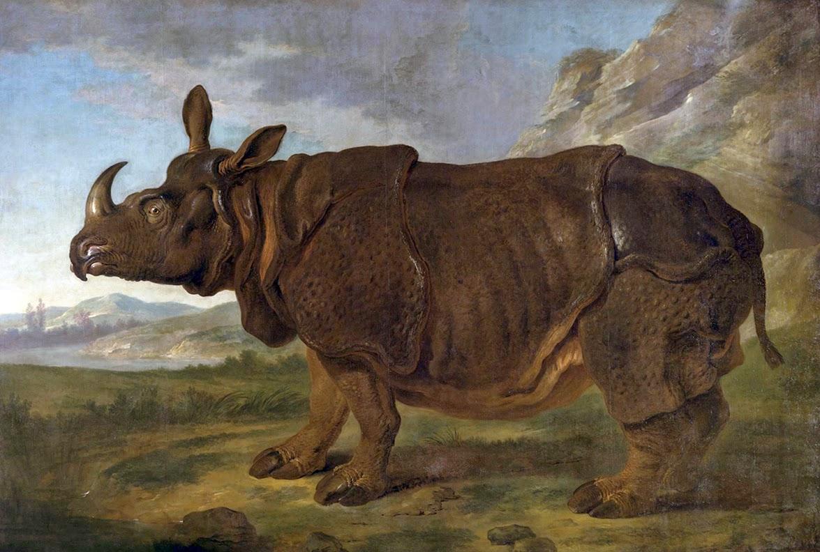 Jean-Baptiste Oudry, La rinoceronte Clara en París (1749), Staatliches Museum, Schwerin