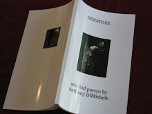 Densities, selected poems by Anthony DiMichele