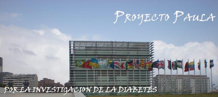 Proyecto Solidario Paula