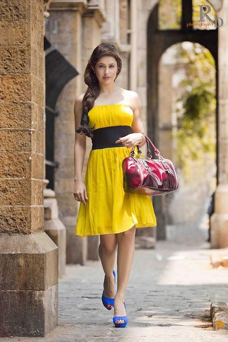 gorgeous beauty | yuvika chaudhary | photo gallery