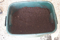 Composting in Your Backyard