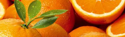 Recettes Desserts-Orange au Cointreau