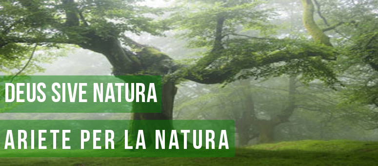 Deus Sive Natura.