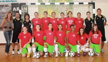 Seniores Femininas 2012/2013