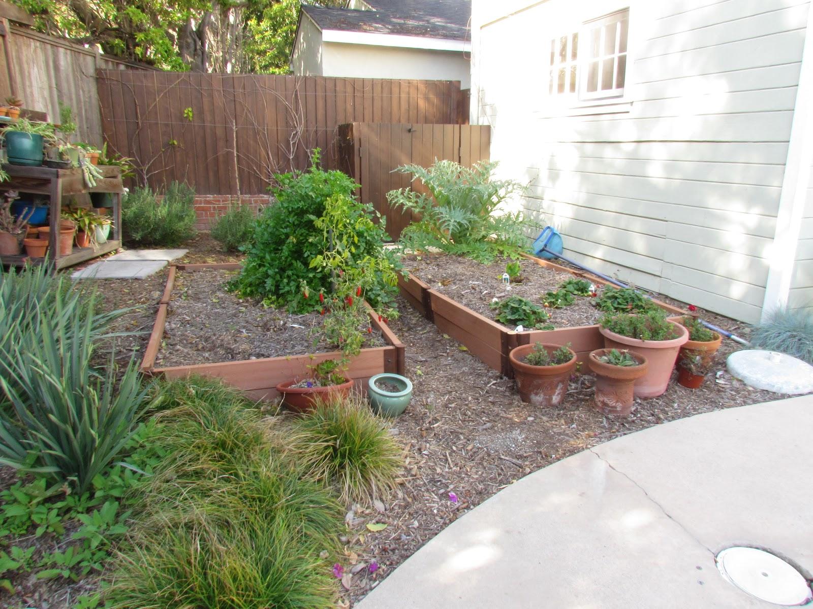 mar vista green garden showcase 3311 coolidge avenue