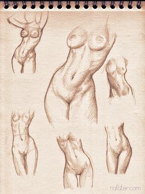 rafater anatomy studies