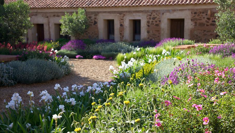 Jardim de stefania jardim mediterr neo for Plantas jardin mediterraneo