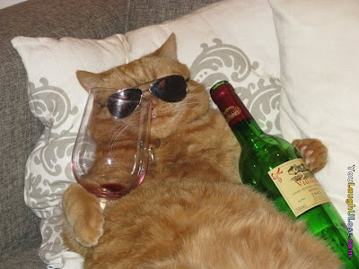 A ginger cat wearing sunglasses reclines with a wine glass and bottle