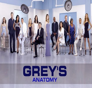 Assistir Grey's Anatomy 11ª Temporada Online Legendado