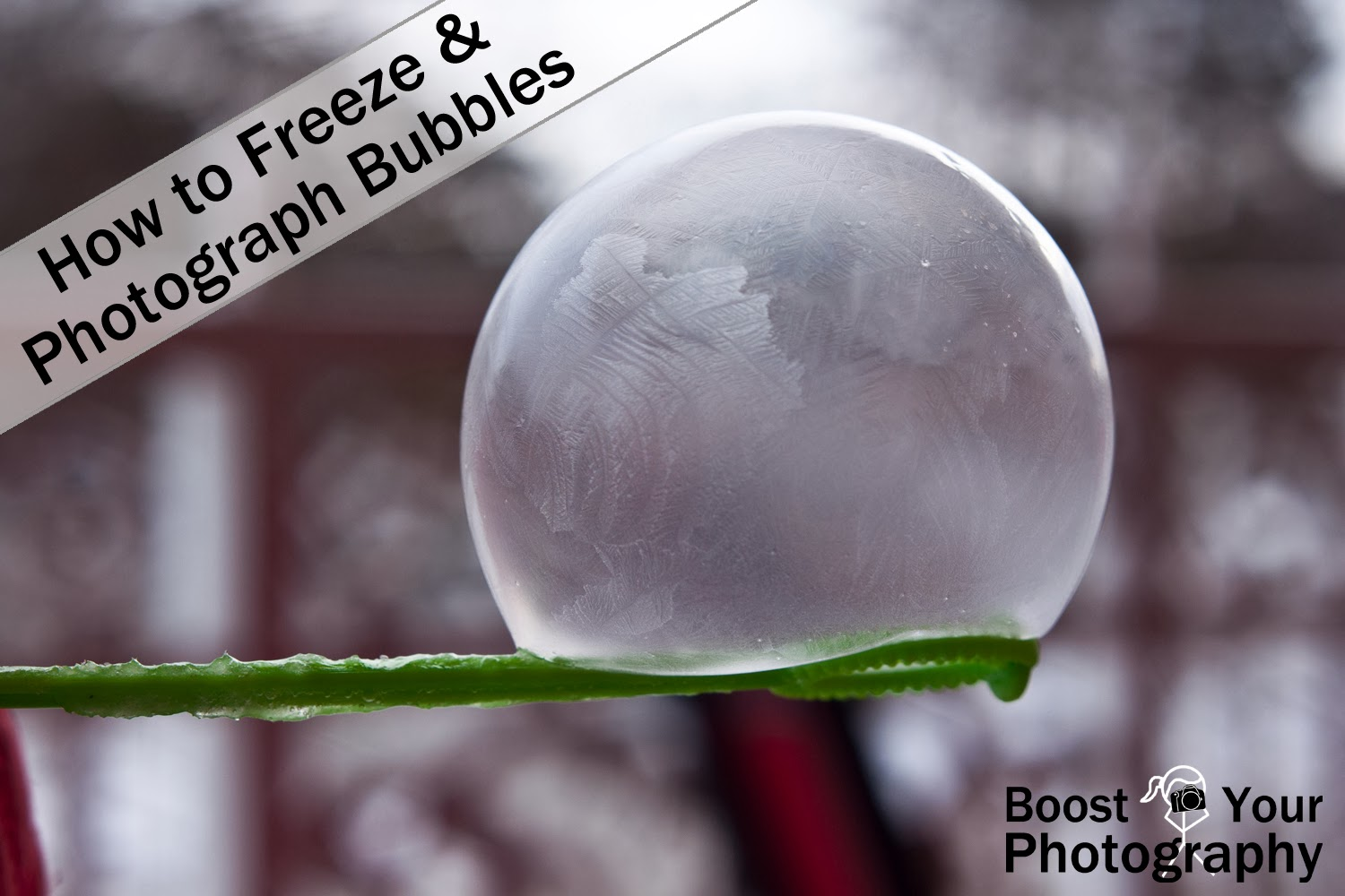 bubbles, frozen bubbles, frozen bubble photography, how to, photography