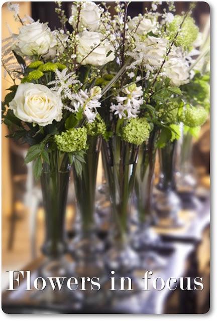 vita rosor, blommor i fokus