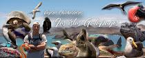 Conoce las Islas Galápagos