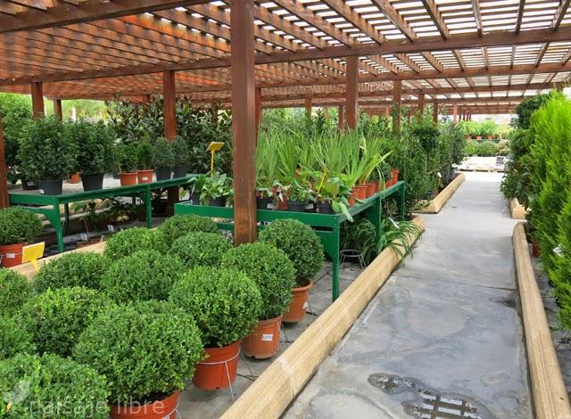 Visita a viveros projardin en alcorc n paisaje libre for Vivero estructura