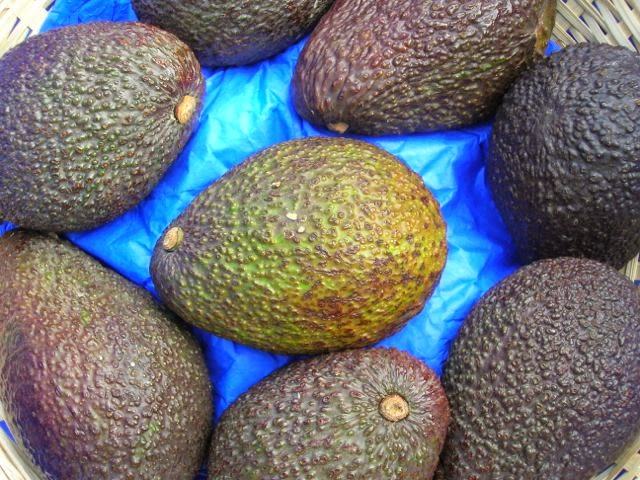 Peruvian Hass Avocadoes