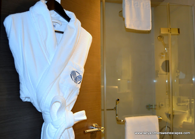 Park Rotana walk-in shower