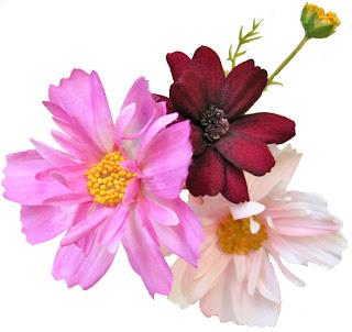 造花のコスモス