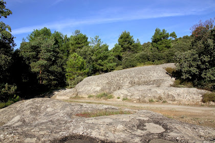 Grans plaques de roca dura formada per conglomerats i gresos de color gris, característics de la zona coneguda com les Roques de les Serps