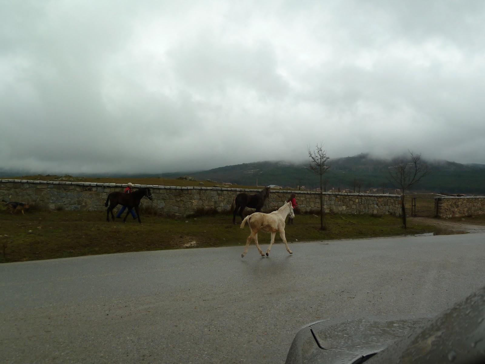Paseo y chupa bajo la lluvia - 3 part 6