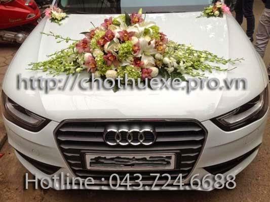 Cho thuê xe cưới màu trắng Audi A4