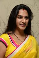 Surekha Vani Yellow Saree Hot photos at Yevadu movie Press Meet13
