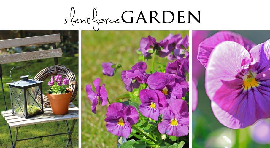 silentforce garden