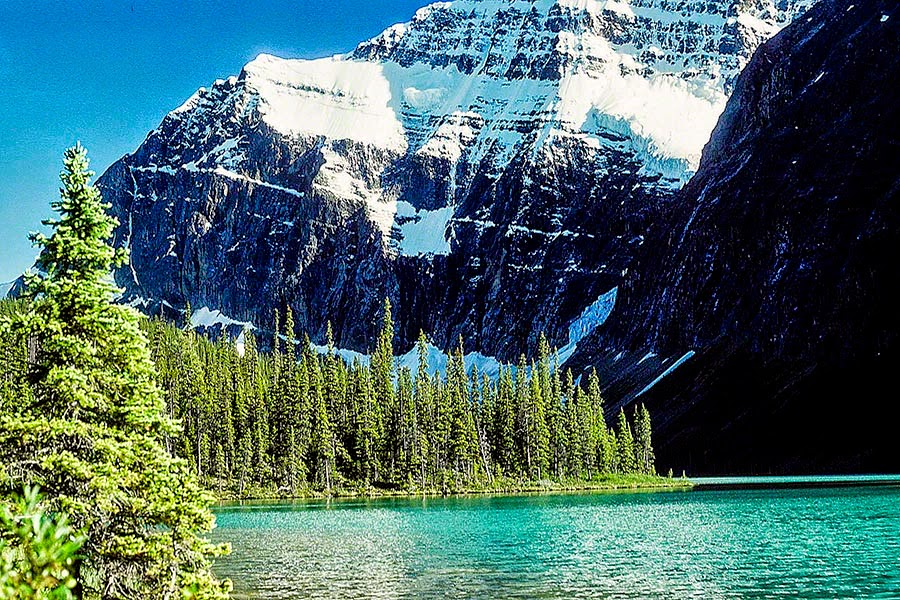 Mt. Edith Cavell, Jasper National Park