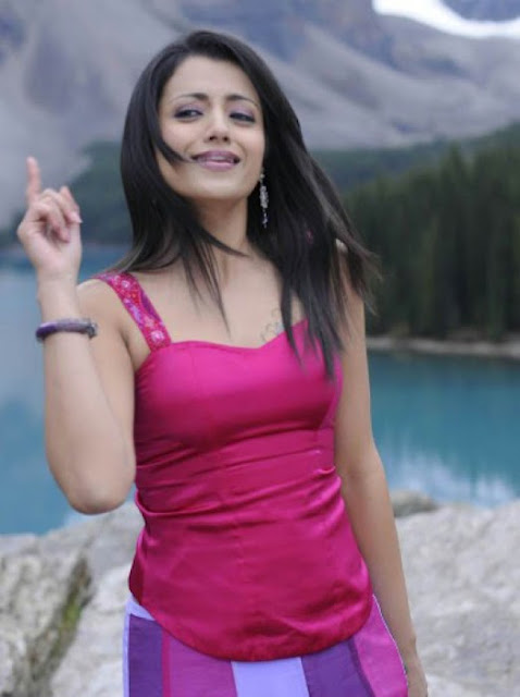 Actress Trisha Backless Picture