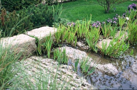 Naturstein für den Gartenteich - Nagelfluh als Einfassung und Trittstein für den Teich