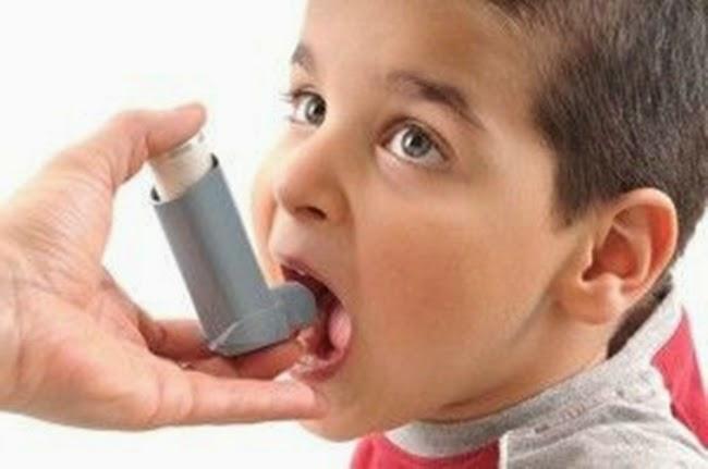 Obat Herbal untuk Asma