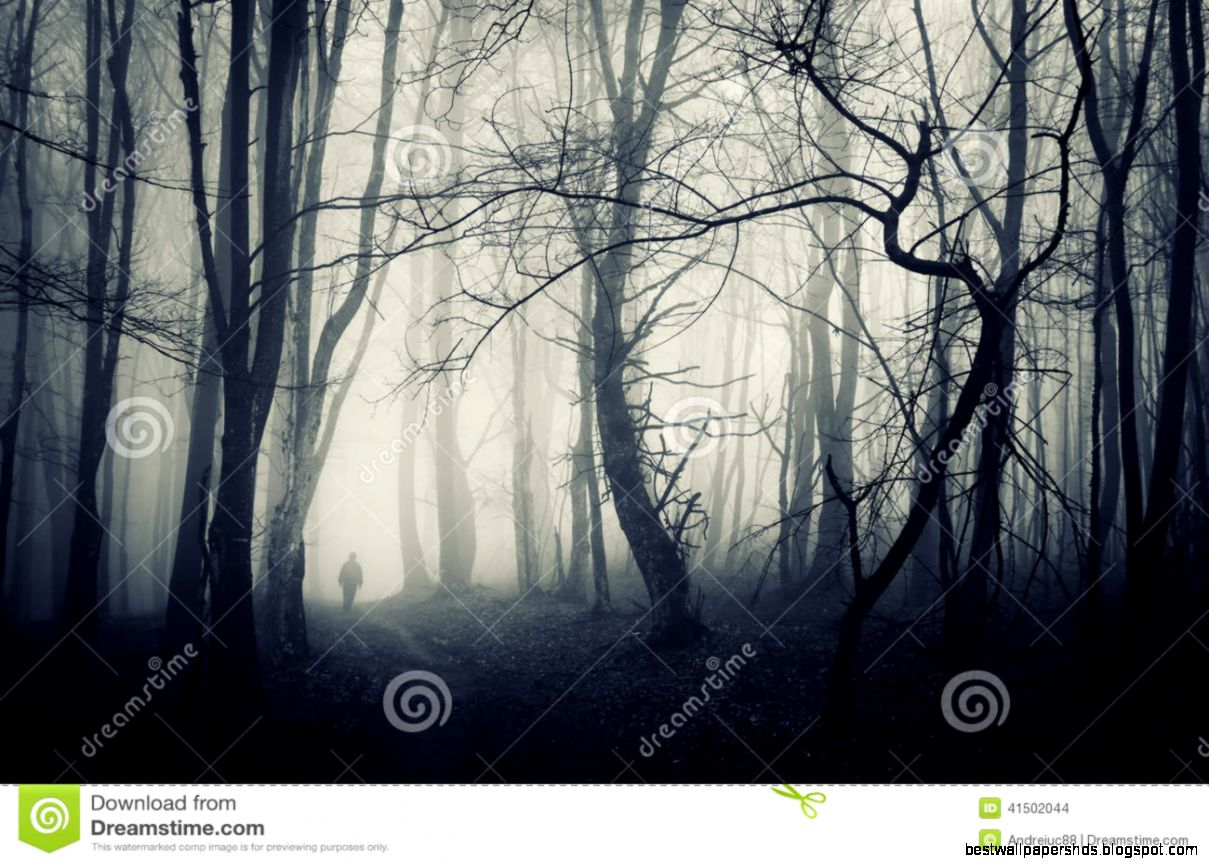 Spooky Forest With Man Walking On A Dark Path Stock Photo   Image