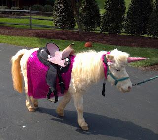 party pony unicorn