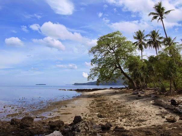Pulau Dutungan dan Berbagai Macam Fauna