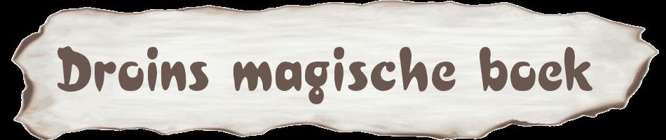 Droins magische boek