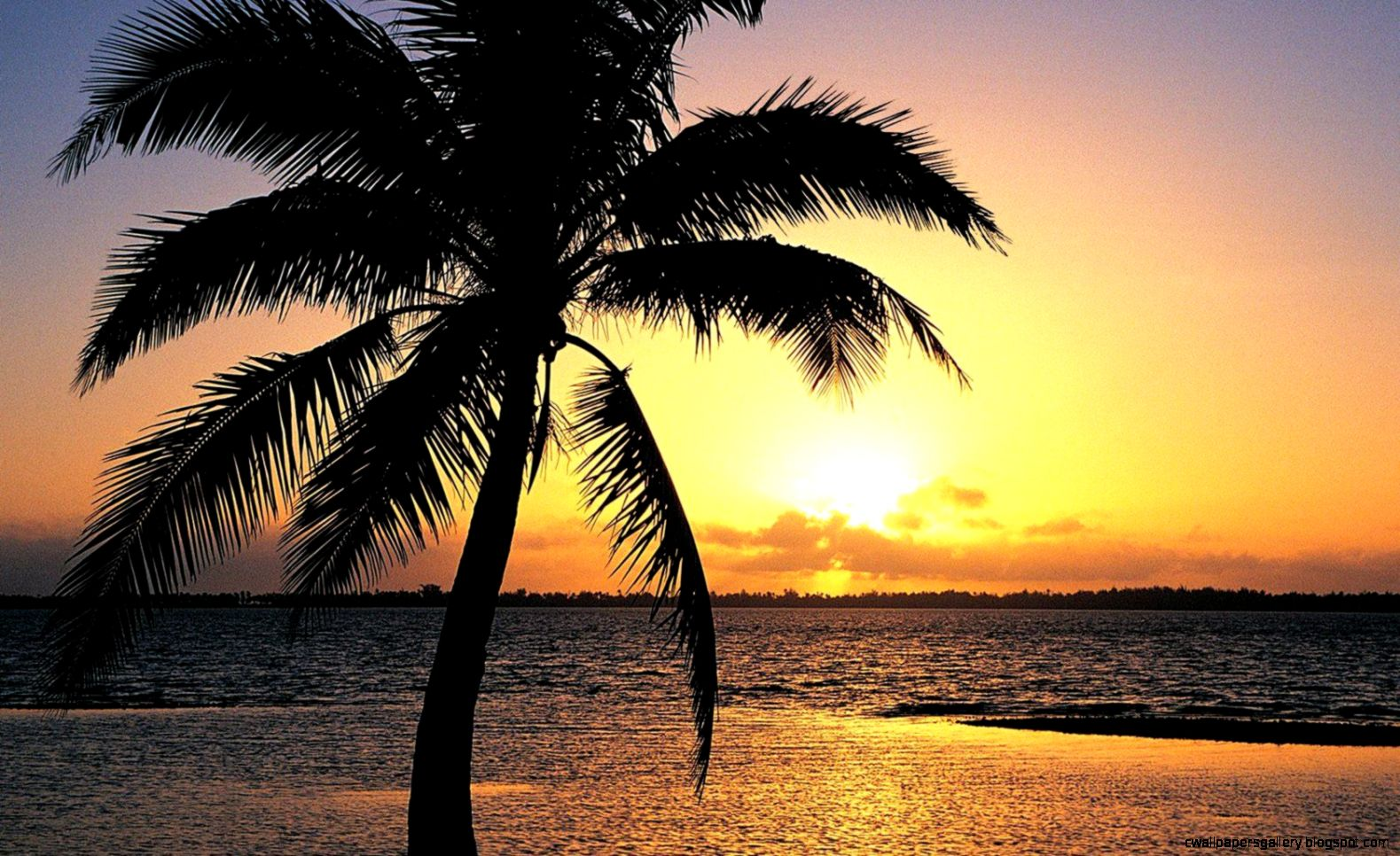 Tropical Island Sunset Wallpapers