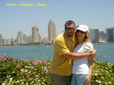 Beautiful San Diego from Coronado Island, California