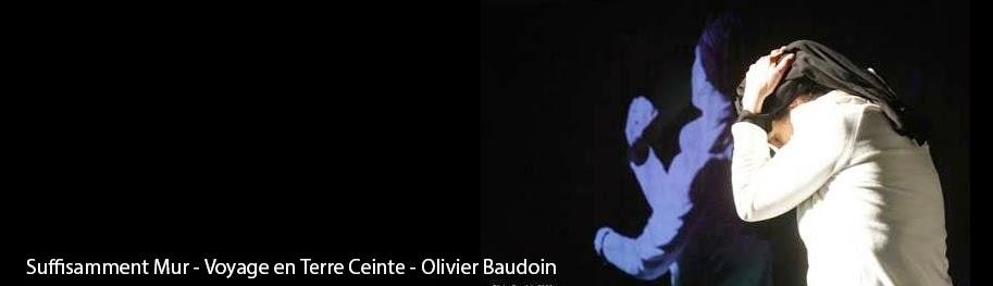 Suffisamment mur - Introspection en Terre Ceinte - Olivier Baudoin