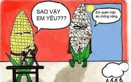 Ảnh chế mùa nắng nóng hài hước cách chống nóng hài hước