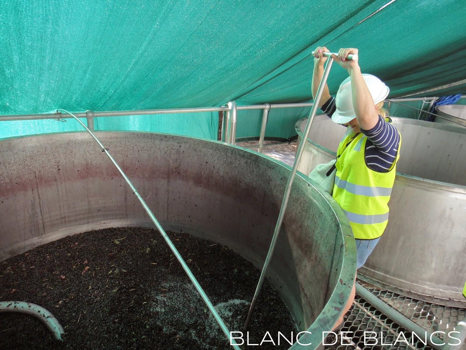 Richmond Grove winery - www.blancdeblancs.fi