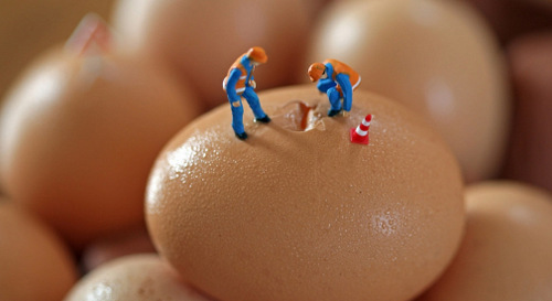 05-Christopher-Boffoli-Bio-Miniatures-with-Food-Egg-Repair
