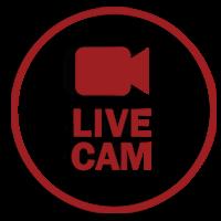 Ανδρονιανοι livecamera