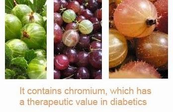 gooseberry health benefits 7