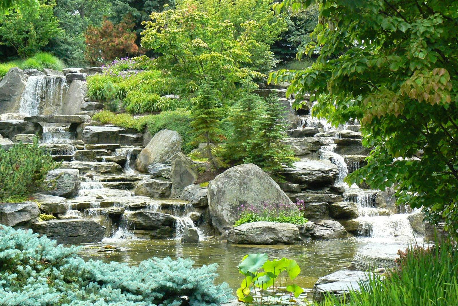 Wanda 39 s garden adventures frederik meijer gardens - Frederik meijer gardens and sculpture park ...