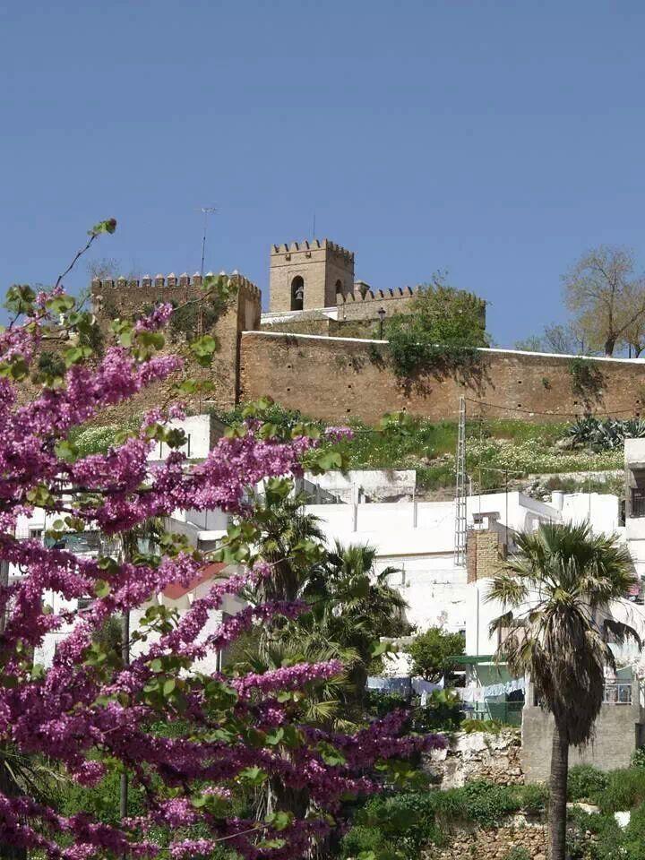 Obras en el arrabal del Castillo de Alcalá de Guadaíra