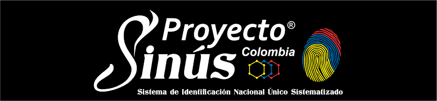 Proyecto Sinús